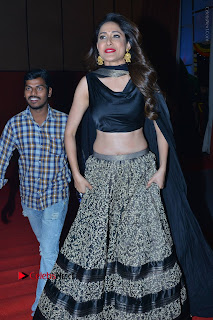 Om Namo Venkatesaya Telugu Movie Audio Launch Event Stills  0026.JPG