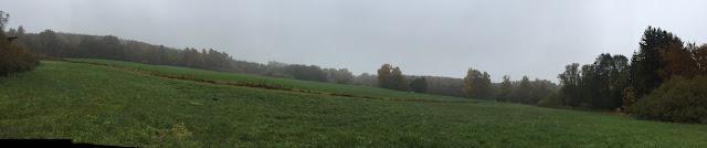 Panoramaphoto von Wiesen im Nebel