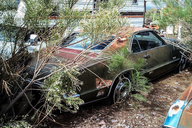 Oldsmoble Toronado