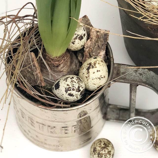 DIY Frühlingsdeko mit Hyazinthen und alten Küchenutensilien