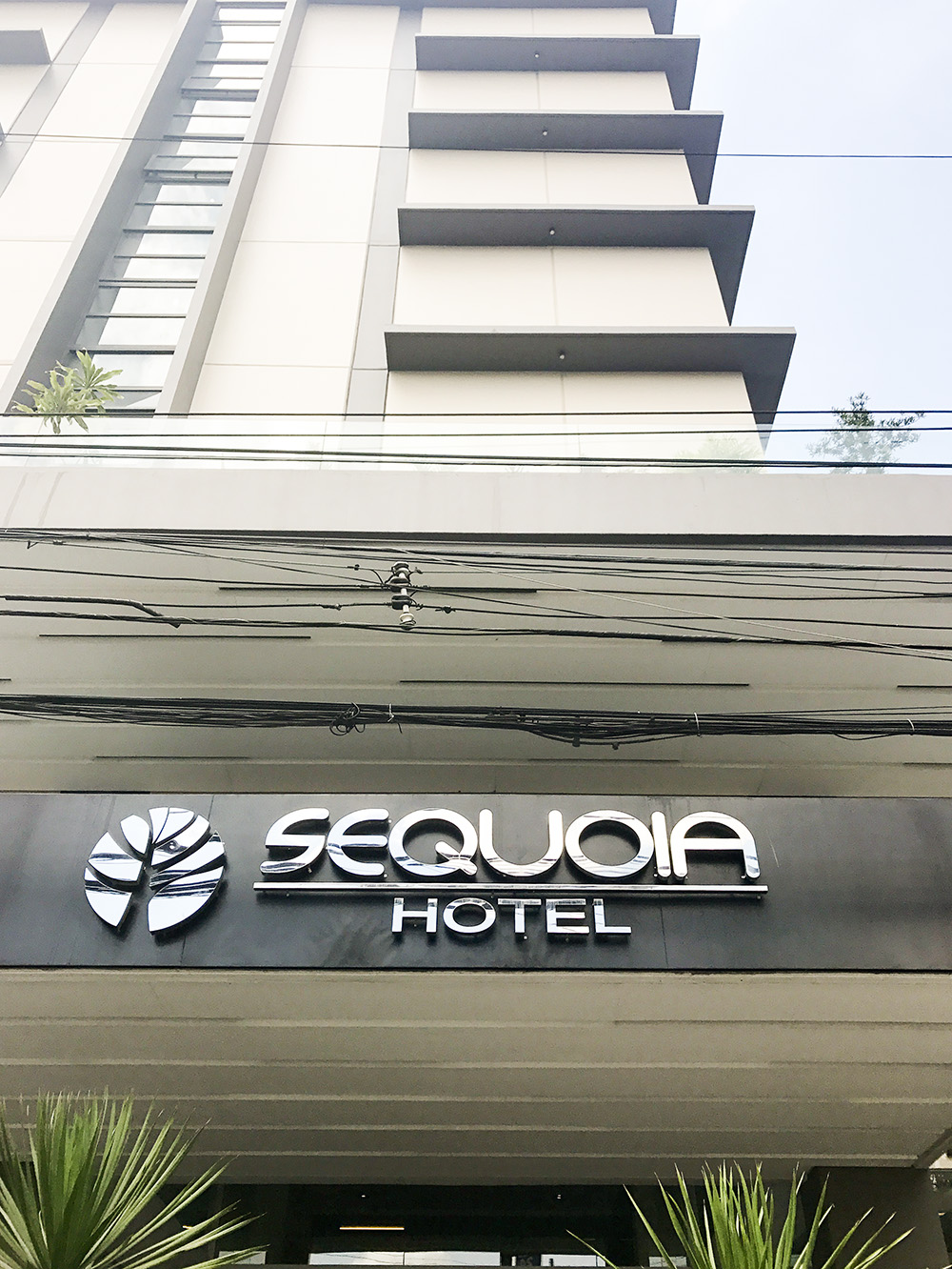 Practical Travelers Choice: Sequoia Hotel