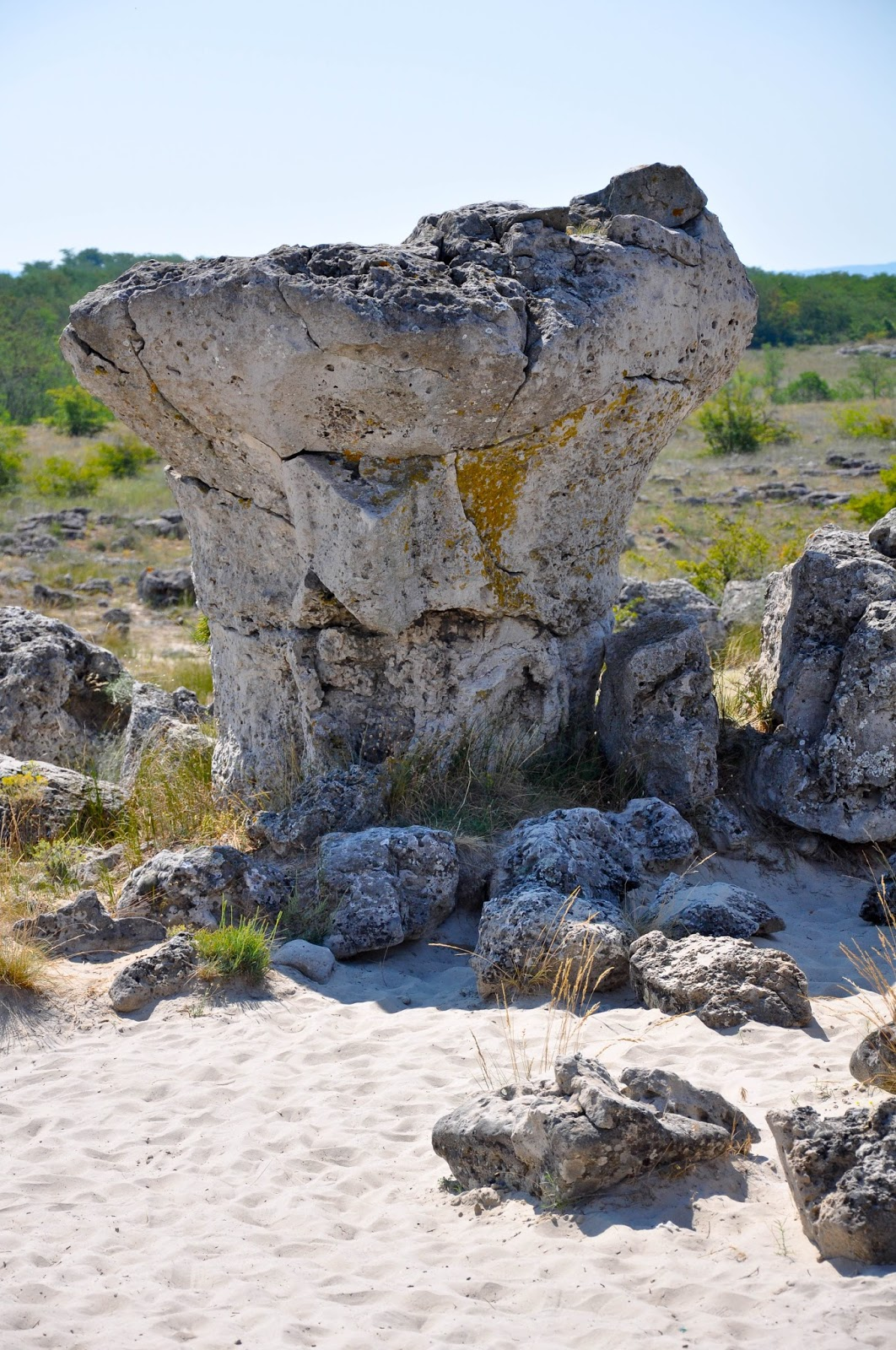 One of the larger stones, The Stone Forest, Varna, Bulgaria