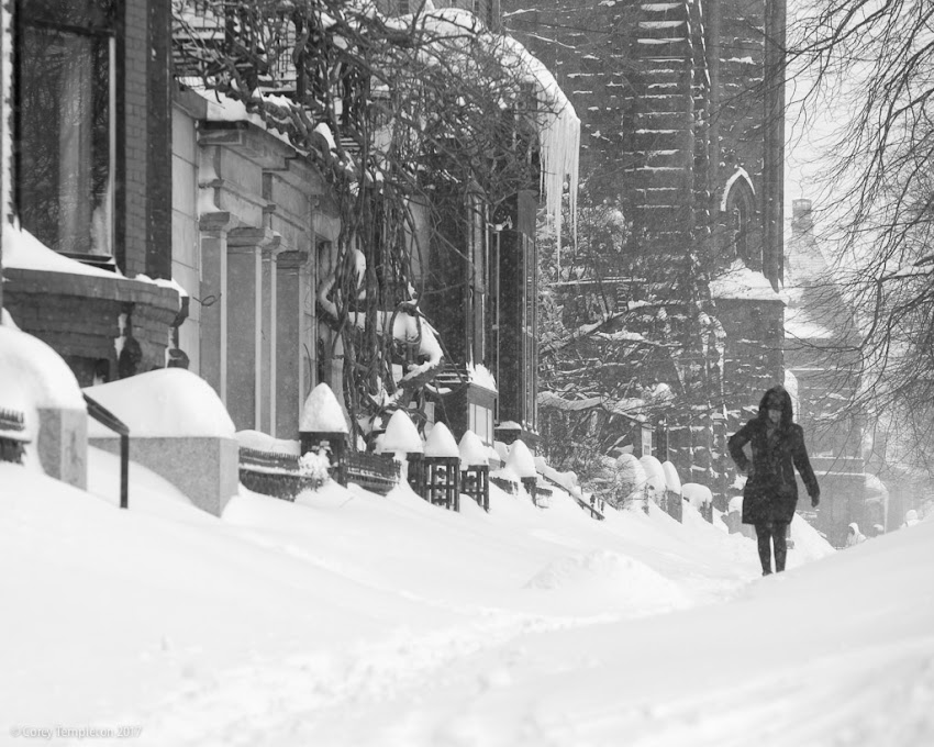 Portland, Maine USA February 2017 photo by Corey Templeton during a winter snow storm, a classic shot down State Street from Longfellow Square.