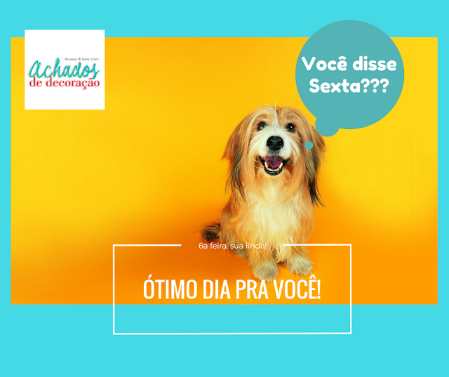 blog-achados-de-decoracao-cachorro-sorrindo