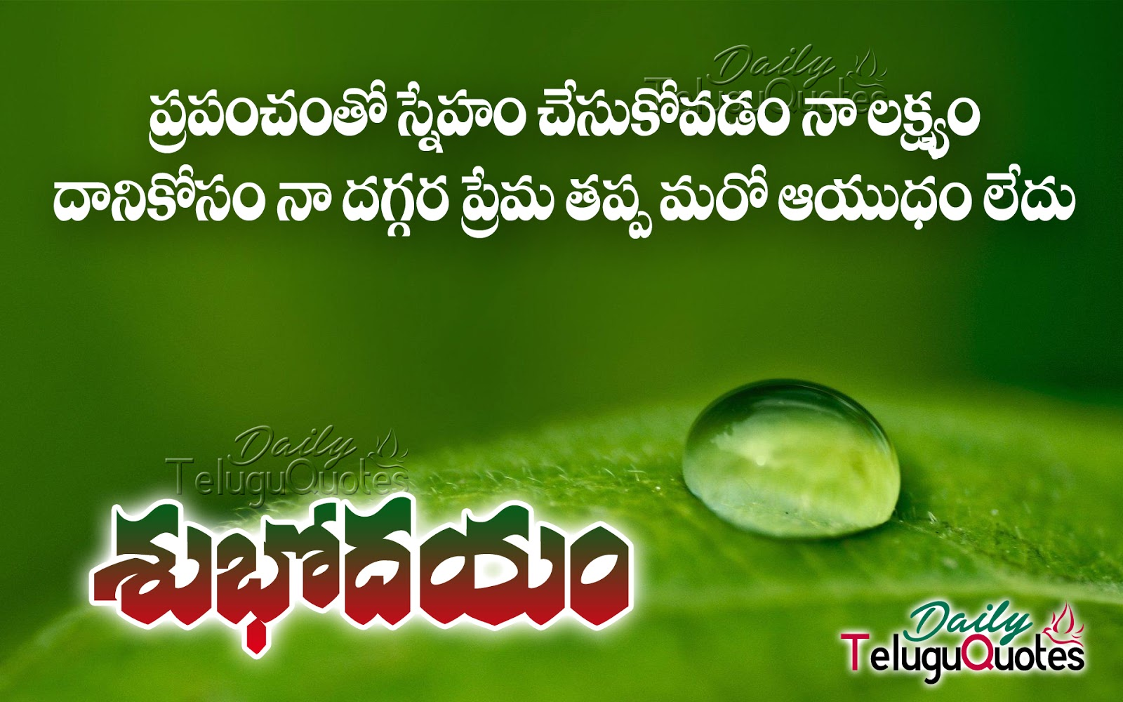 Good Morning Telugu Sms Beautiful Telugu Quotations