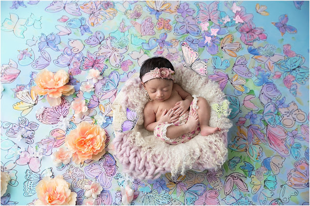 Baby girl posed in a bowl on a Heidi Hope background with butterflies.