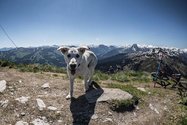 Bikebergsteigen Kitzbüheler Alpen