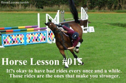 Dressage training with Jenny Eriksson: when nothing goes quite to plan