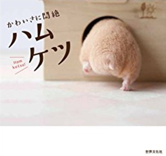 5 Obsesi Orang Jepun Yang Sangat Pelik