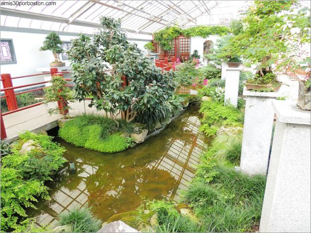 Garden of Weedlessness del Jardín Botánico de Montreal