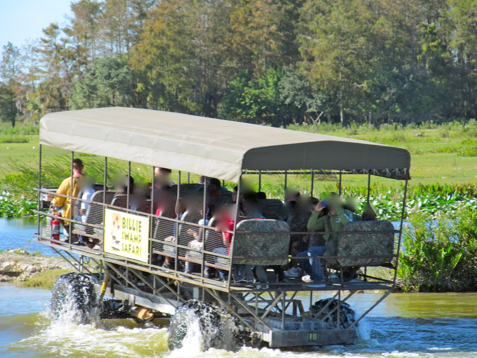 Swamp Buggy Tour at Billi's Swamp Safari