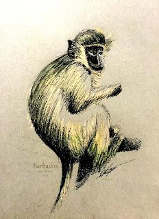 https://c-f-legette.pixels.com/featured/green-monkey-c-f-legette.html?newartwork=true