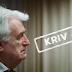 Video: Karadžić osuđen na doživotni zatvor!