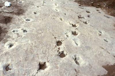 Le misteriose impronte del Paluxy River