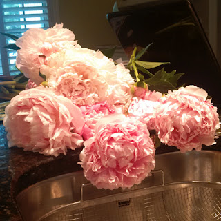 peonies: QuiltBee