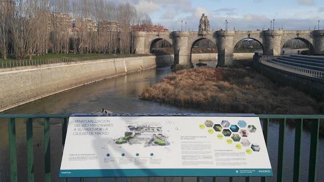 Día Mundial de los Humedales 2018, Día Ramsar 2018, Conoceris, Madrid, Excursiones Aitor, Manzanares, rutas guiadas, observación de la naturaleza, Madrid fauna, Renaturalización del Manzanares, Puente de Toledo, actividad gratuita,