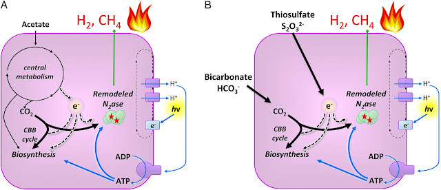 Methane Fuel