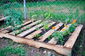 How to plant in a Pallet Garden