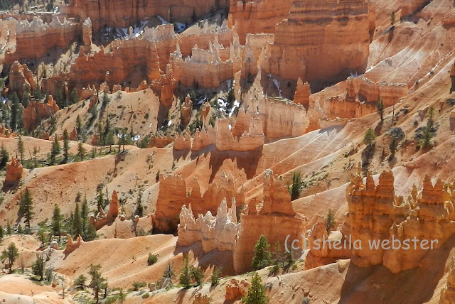 Afternoon sun shines down to highlight the hoodoos