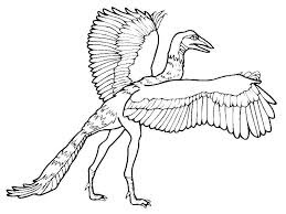 Best Of Archaeopteryx Dinosaur Coloring Pages Images