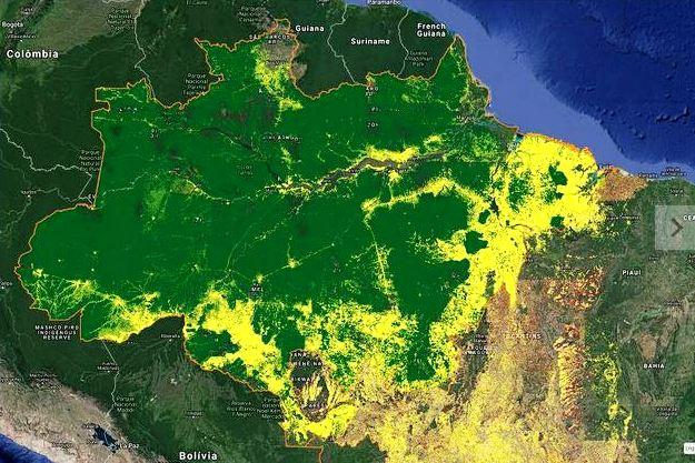 Em julho, desmatamento na Amazônia aumentou 278% em relação ao mesmo mês em 2018