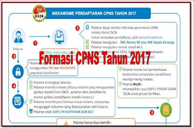 persyaratan cpns bkn tahun 2017