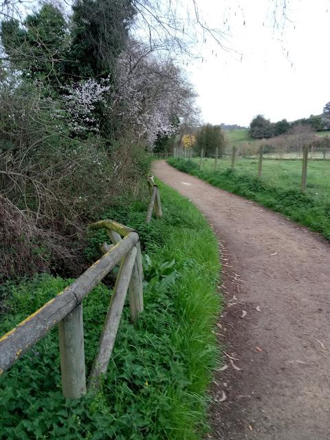 Camino y barandilla. Barandilla de madera rota