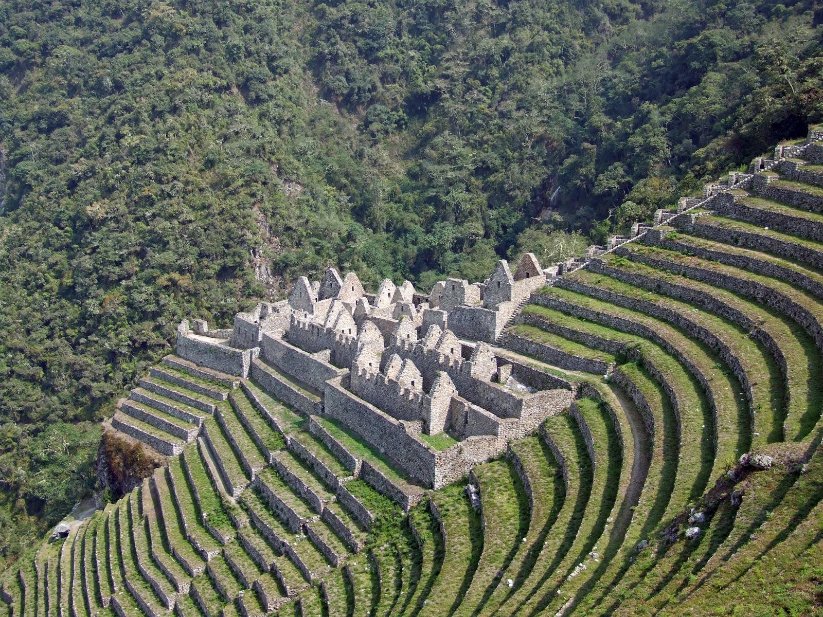 Design Practice Inca Empire