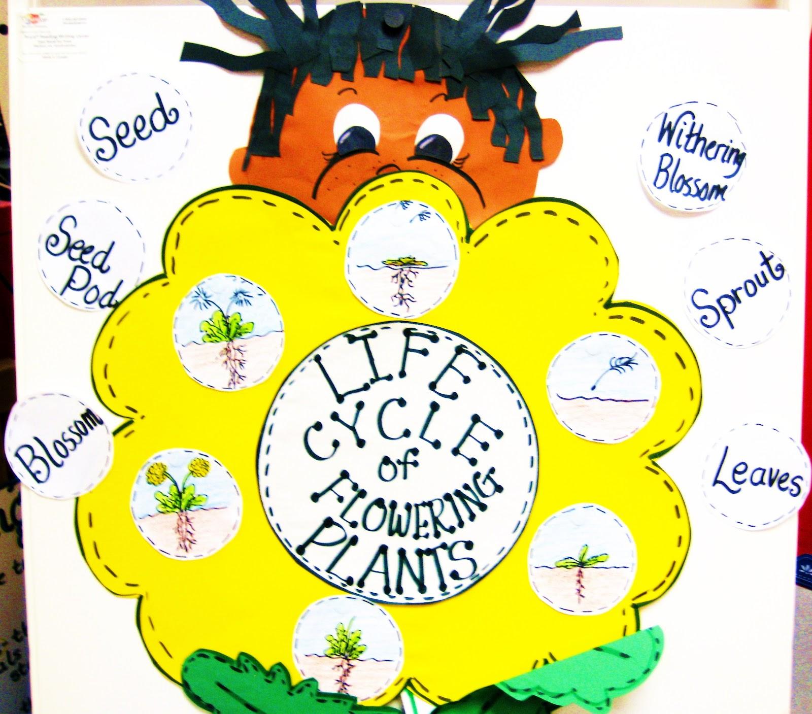 First Grade Wow Dandy Dandy Dandelion