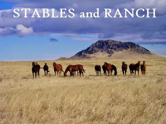 Stables and Ranch Living