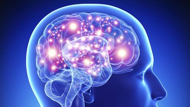 7 Keajaiban Otak Kanan dan Otak Kiri Manusia