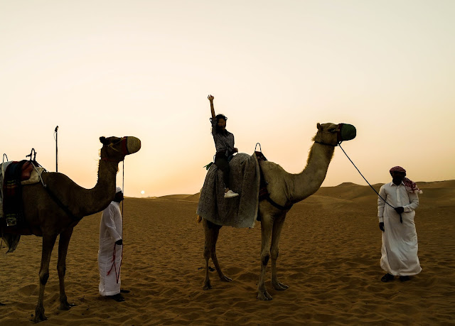 Desert Safari Abu Dhabi Camel Riding Travel Blog