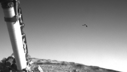 Bird on Mars filmed in mid flight by the Rover and accidently released by NASA.