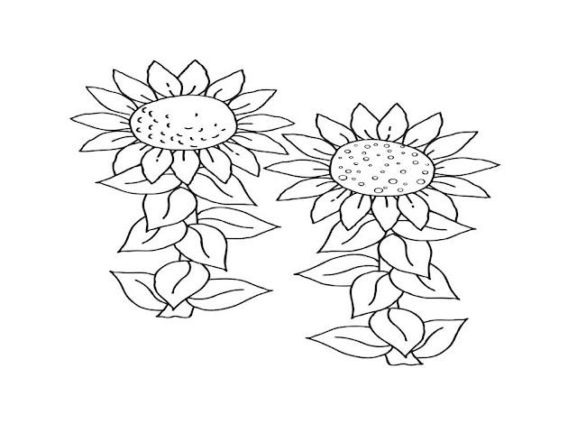 gambar bgambar mewarnai bunga