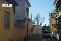 Τρομακτικό περιστατικό στο Άργος: Ζευγάρι ηλικιωμένων ζει στον ίδιο χώρο με 20 σκυλιά - Απίστευτη δυσωδία