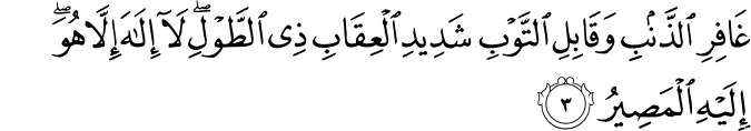Surat Al Mu'min Ayat 3