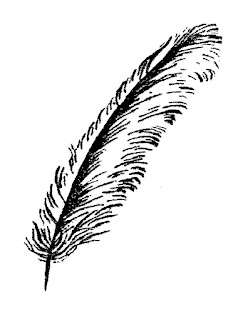 feather illustration download