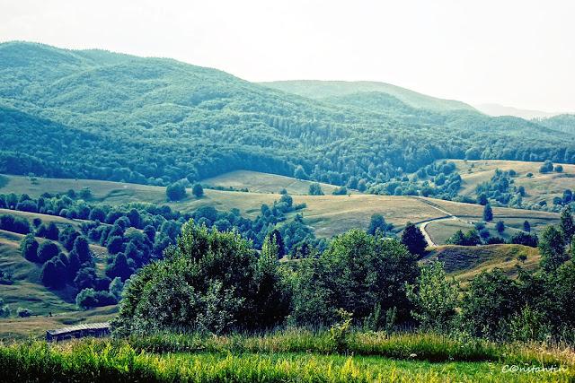 Pãltinoasa - vedere spre valea Humorului si Obcina Mare - blog Foto-Ideea