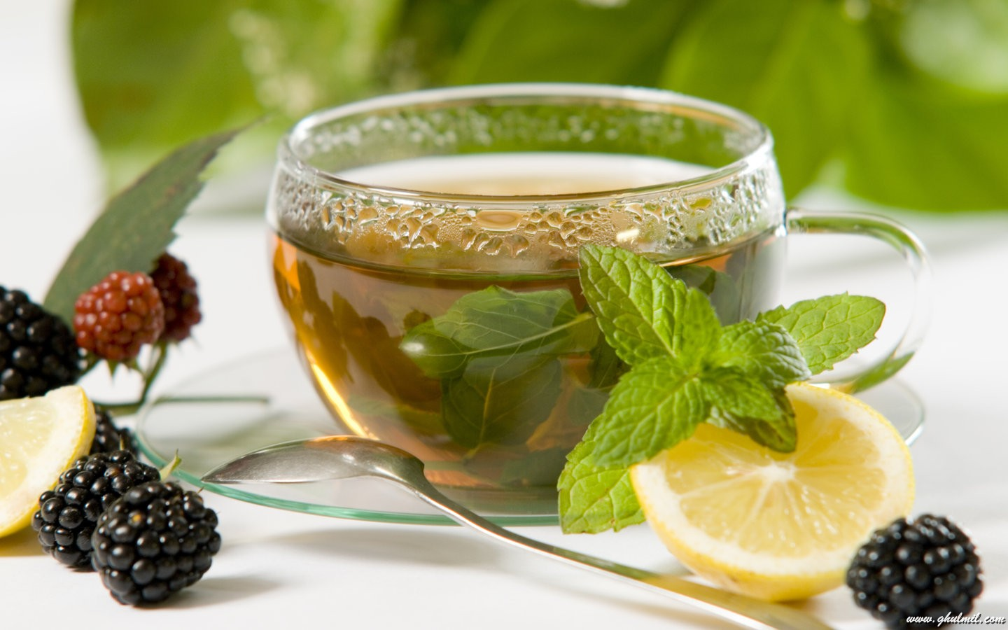 iced Green Tea Recipe images