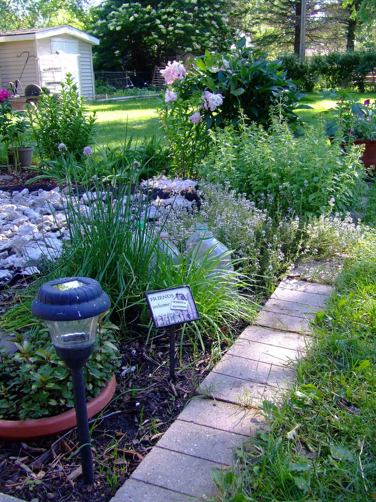 The Full Circle Gardener: Plant An Herb Garden