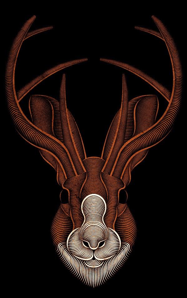 Line Drawing Illustrator : Design dautore the work of patrick seymour