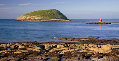 Puffin Island, Weles