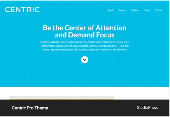 Centric Pro Theme Award Winning Pro Themes for Wordpress Blog : Award Winning Blog