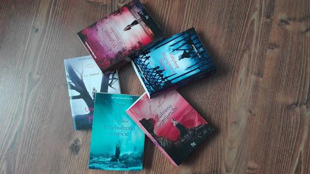Wodospady Cienia Book Tag