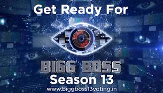 bigg boss 13 voting, bigg boss 13 contestants. bigg boss 13 voting poll