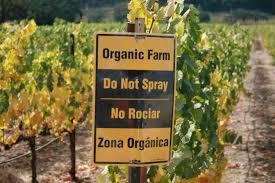 <alt img src='gambar.jpg' width='100' height='100' alt=' organic agriculture'/>