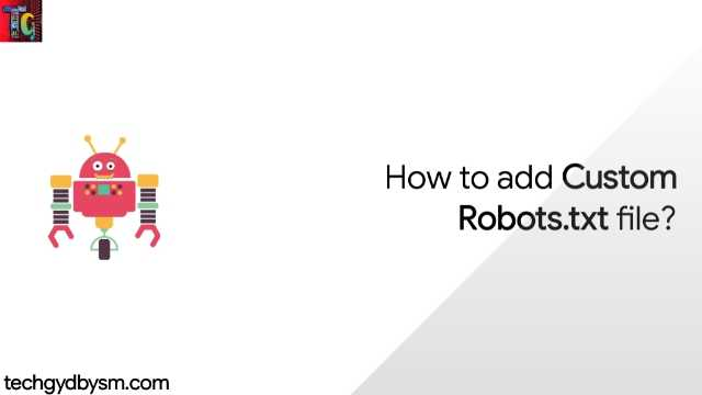 How to add Custom Robots.txt file?