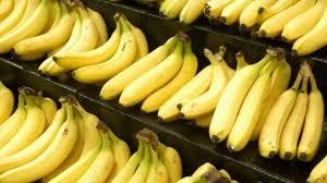 دراسه جدوى مشروع تجارة الموز بالجملة والتجزئة فى مصر 2018