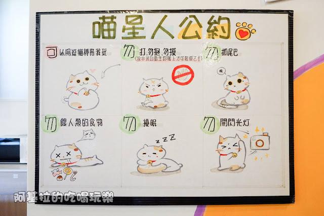 14559946 1099288216791089 3515353612787960834 o - 熱血採訪 朵貓貓咖啡館 - 貓咪餐廳