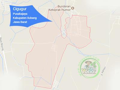 PETA : Desa Cigugur, Kecamatan Pusakajaya